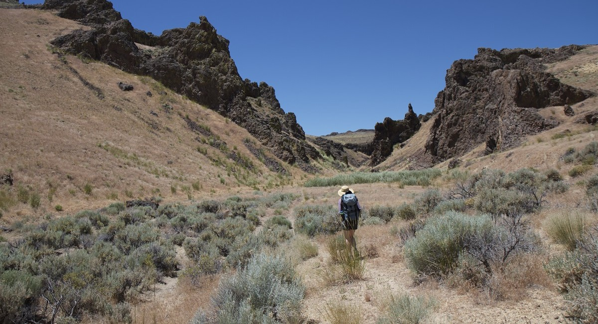 Photo of a hiker in a canyon