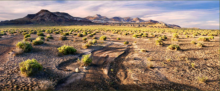 Photograph of a Great Basin landscape